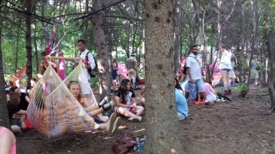 Hipsters in park in hangstoel